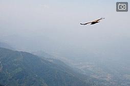 Как мы летали на парапланах в Бире