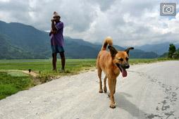 Прогулки в Покхаре. Идем в сторону Happy Village.