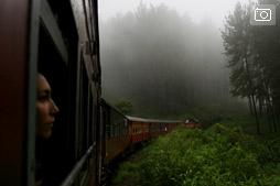 Поезд из Канди в Нувара Элию